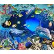 tengeri állatok, delfinek