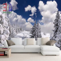 Téli havas táj