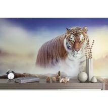 Figyelő tigris