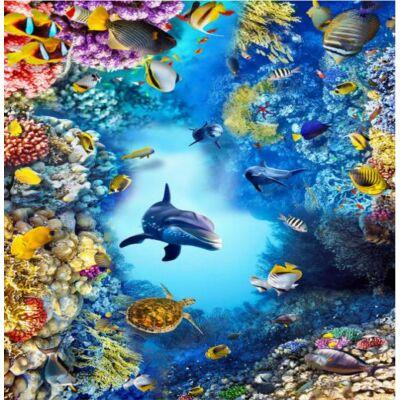 Delfin korallok között