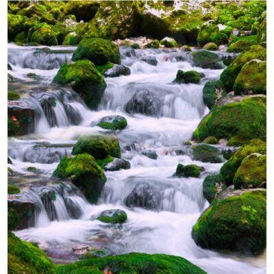 Vízesés mohás kövekkel
