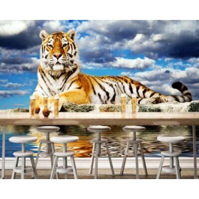 Házőrző tigris