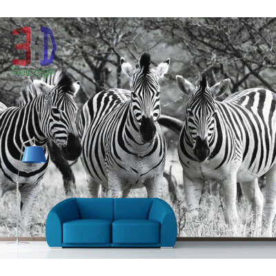 Zebracsorda