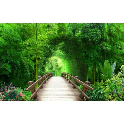 Híd a sűrűbe