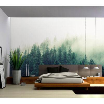 Ködös fenyőerdő